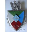 1° RCS Plaque