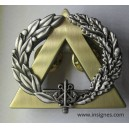 Brevet Secourisme Echelon argent