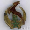 64° Régiment d'Artillerie d'Afrique RAA (gazelle)