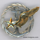 Brevet ELEVE PILOTE Personnels volant Aéronavale métal léger